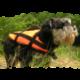 Gelbėjimosi liemenė gyvūnams AQUARIUS PET